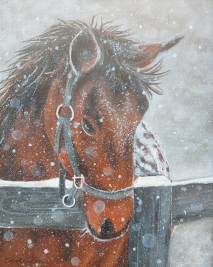 """16 - """"Horse in Snow"""" by Beverly Cook - Acrylic - 12""""x15 - $150 framed - contact beverlycookjp@gmail.com"""
