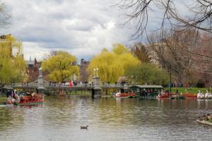 "44 - ""Boston Public Garden Lagoon Bridge"" by Mark Bankoff - Photograph - 18""x12"" - $60  - contact mbankoff@comcast.net"