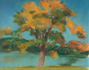 """56 - """"Changing Colors"""" by Mary Connor - Pastel - 22'x24"""" - $200 framed - contact maryiconnor@verizon.net"""