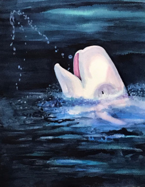 "60 - ""Beluga Whale"" by Maya Jacob - Watercolor - 11""x14"" - $400 framed - contact mayamjacob@hotmail.com"