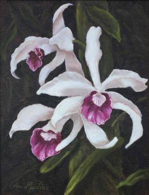 "62 - ""Hawaiian Orchid"" by Ann Medina - Oil - 9""x12"" - NFS - contact aemedina4@verizon.net"