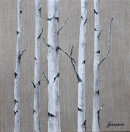 "78 - ""Birch Grove"" by Joyce Fukasawa - Acrylic - 12""x12"" - SOLD  - contact mimijyf@gmail.com"