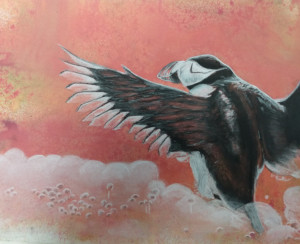 31A. Puffin by Maeve  Mattingly