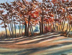 16A. Sunlit Reedy Meadow, Lynnfield by Shaila Desai