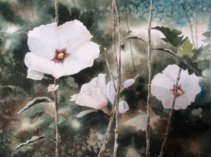 18B. Rose of Sharon by William Deveney