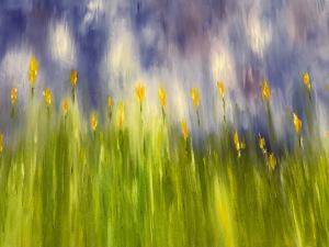 43A. Yellow Matchstick Flowers by Emma Deirmendjian