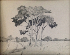 32B. Cluster of Trees in an Open Field by Margaret Chiaraluce