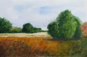 27A. On Reedy Meadow by Pamela Krinsky